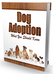 Dog Adoption Newsletter Free PLR Article with private label rights