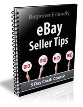 Ebay Seller Tips Free PLR Article with private label rights