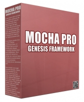 Mocha Pro Genesis Framework WordPress Theme Template with Private Label Rights/Developers Rights