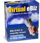 Virtual eBiz eBook with Resell Rights