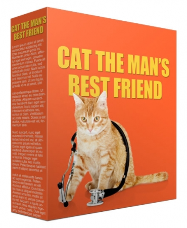 Cat As A Man's Best Friend