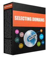 Selecting a Domain Name for Your Success Audio with Private Label Rights/Giveaway Rights