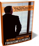 Internet Marketing For Business People eBook with private label rights