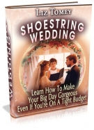 Shoestring Wedding eBook with Master Resale Rights