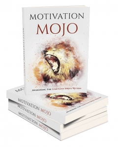 Motivation Mojo eBook with Master Resell Rights