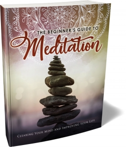 The Beginner's Guide To Meditation ebook with Master Resale Rights
