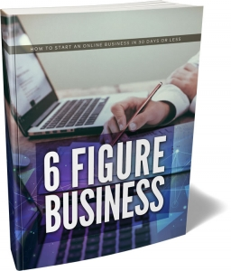 6 Figure Business ebook with Master Resale Rights