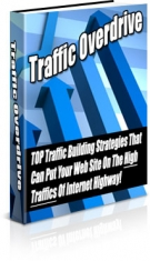 Traffic Overdrive eBook with Private Label Rights