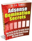 Adsense Domination Secrets eBook with Master Resale Rights