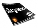Chargebacks eBook with Resell Rights