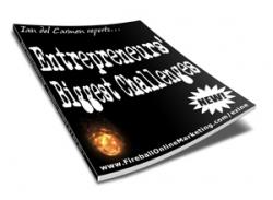 Entrepreneurs' Biggest Challenges
