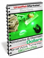 Website & Domain Dollars eBook with Master Resale Rights