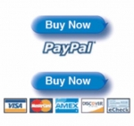 Create PayPal Buy Now Button Video Video with Private Label Rights