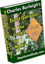 Don\'t Get Lost In The Jungle Of MLM eBook with Master Resale Rights