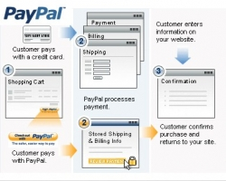Create A PayPal Custom Payment Page