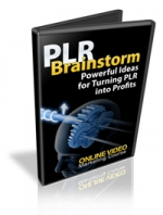 PLR Brainstorm Video with Master Resale Rights