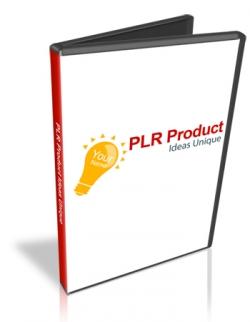 PLR Product Ideas Unique