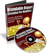 Brandable Report Creation For Newbies Video with Private Label Rights