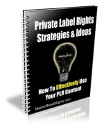 Private Label Rights Strategies & Ideas eBook with Giveaway Rights