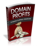 Domain Profits eBook with Private Label Rights