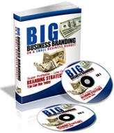 Big Business Branding On A Small Business Budget eBook with Private Label Rights