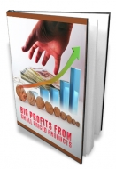 Big Profits From Small Priced Products eBook with Master Resale Rights