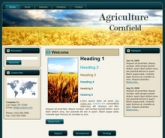 Cornfield WP Theme Template with Master Resale Rights