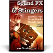 Sound FX & Stingers Video with Personal Use Rights