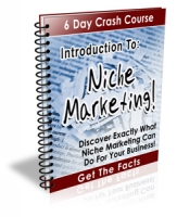 Introduction To: Niche Marketing! eBook with Private Label Rights