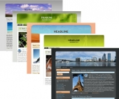 Exclusive Wordpress Themes - V3 Template with Master Resale Rights