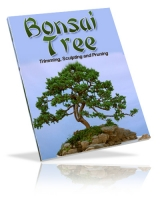 Bonsai Tree eBook with Private Label Rights