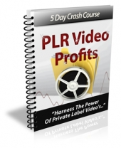 PLR Video Profits eBook with Private Label Rights