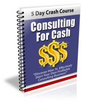 Consulting For Cash eBook with Private Label Rights
