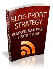 Blog Profit Strategy eBook with Resale Rights