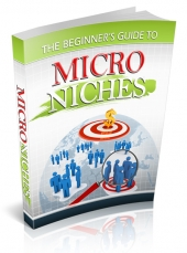 The Beginner's Guide to Micro Niches eBook with Private Label Rights