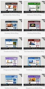 Niche Blogs 1-10 Template with Personal Use Rights