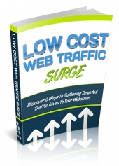 Low Cost Web Traffic Surge eBook with Private Label Rights