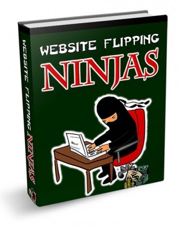 Website Flipping Ninjas