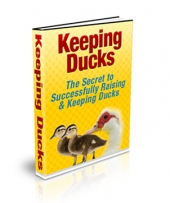 Keeping Ducks eBook with Private Label Rights