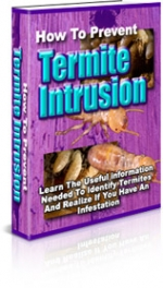 How To Prevent Termite Intrusion eBook with Private Label Rights