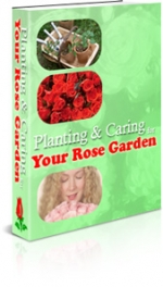 Planning & Caring Your Rose Garden eBook with Master Resale Rights