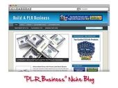 PLR Business WordPress Niche Blog Template with Personal Use Rights