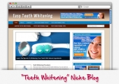 Teeth Whitening WordPress Blog Template with private label rights