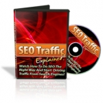 SEO Traffic Explained eBook with Master Resale Rights
