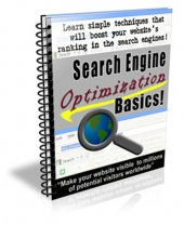 Search Engine Optimization Basics eBook with Private Label Rights