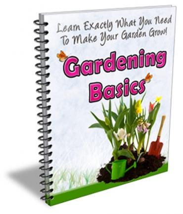 Gardening Basics Newsletter