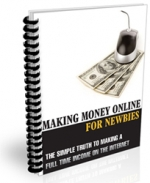 Making Money Online For Newbies eBook with Private Label Rights