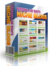 High Quality Niche Blog 072013 Template with Personal Use Rights