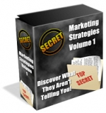 Marketing Strategies eBook with Private Label Rights