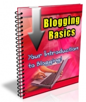 Blogging Basics 2013 eBook with Private Label Rights